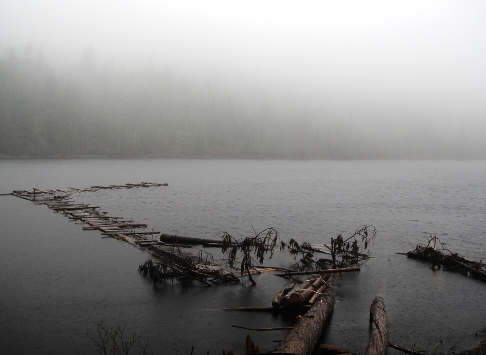 Floating dock at north end of Carlson Lake