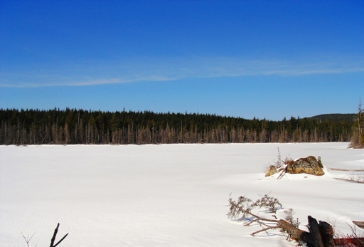 Carlson Lake covered in snow.