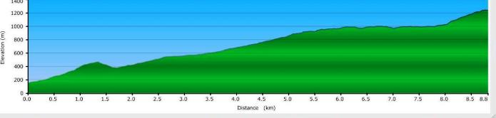 Mount Hallowell elevation profile