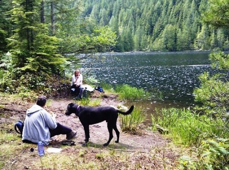 Lunch with the dogs at Gambier Lake