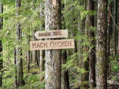 Mach Chicken sign