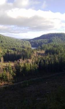 View of Crowston Lake from Desoto Ridge trail