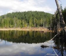 Lone Owl Lake
